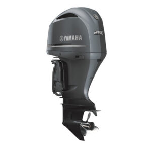 Motor Yamaha F250DETX