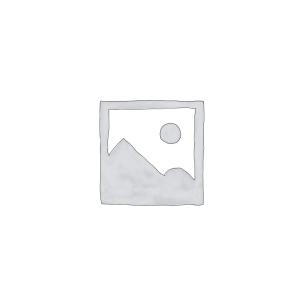 GENERADOR EF6300ISE
